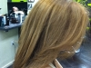 color-and-soft-highlights
